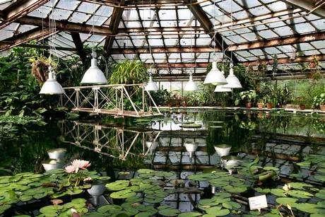 Ботанический сад Петра Великого в Санкт-Петербурге